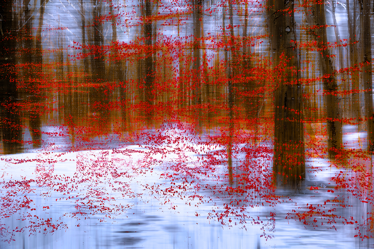 Red Leafes